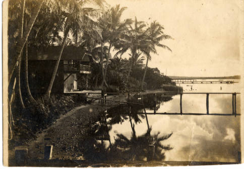 vintage sepia photo palm trees bay shore wooden boat house dock