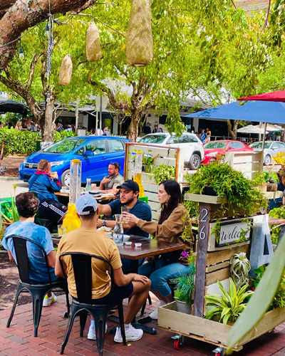 outdoor cafe green tree canopy tropical foliage young customers drinking beer